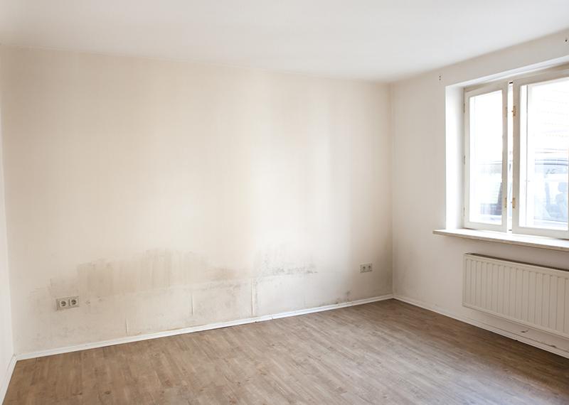 Relativ Feuchte Wände wegen aufsteigender Nässe | Mauerwerkstrockenlegung XK16