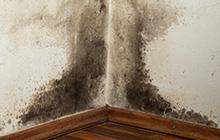 mauerwerkstrockenlegung ohne durchs gen und aufgraben nasse wand trocken legen. Black Bedroom Furniture Sets. Home Design Ideas